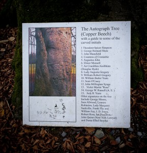 List of signatories on the Autograph tree Coole Park.